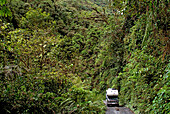 Offroad truck on a track leading through the rainforest of Manu National Park, Amazonia, Peru, South America