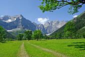 wide path in alpine pasture leading towards mountain range, Großer Ahornboden, Eng, Karwendel range, Tyrol, Austria
