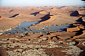 Flooded Sossusvlei with its Camelthorn trees (Acacia erioloba), Namib-Naukluft National Park. Namib desert, Namibia