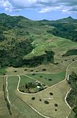 Mauritius island. Agricultural landscape.