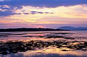 Europe, Great Britain, Ireland, Co. Galway, Connemara, west coast of Connemara