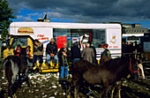 Fish 'n' Chip shop at the traditional horse fair, Ballinasloe, Ireland, County Galway, Europe