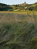View over grain field at Banz Monastery, Main Valley, Franconia, Bavaria, Germany