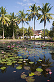 Pond with Lotus blossoms in the garden of the Royal Palace in Luang Prabang, Laos
