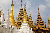 Golden Stupas of the Shwedagon Pagoda at Yangon, Rangoon, Myanmar, Burma
