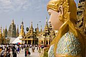 Head of a statue on the grounds of the Shwedagon Pagoda at Yangon, Rangoon, Myanmar, Burma