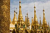 Golden Stupas on the grounds of the Shwedagon Pagoda at Yangon, Rangoon, Myanmar, Burma