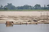 Women working on a raft at the bank of Ayeyarwady river between Mandalay and Bagan in Myanmar, Burma
