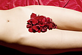 Adult, Adults, Bare, Body, Body part, Body parts, Carnal, Carnality, Close up, Close-up, Closeup, Color, Colour, Contemporary, Detail, Details, Eroticism, Erotism, Female, Flower, Flowers, Indoor, Indoors, Interior, Lying down, Naked, Nude, Nudes, Nudity,