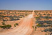 Strzelecki Track, Outback, South Australia, Australia