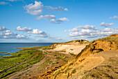 Morsum Cliff, Sylt Island, North Frisian Islands, Schleswig-Holstein, Germany