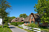 Thatched House, Keitum, Sylt Island, North Frisian Islands, Schleswig-Holstein, Germany