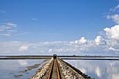 Trolley Causeway to  Hallig Nordstrandischmoor, North Frisian Islands, Schleswig-Holstein, Germany