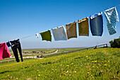 Clothesline, Hallig Oland, North Frisian Islands, Schleswig-Holstein, Germany