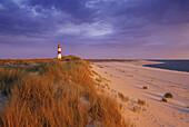 Lighthouse in the dunes in the evening, Ostenellenbogen, Sylt island, North Friesland, North Sea, Schleswig-Holstein, Germany