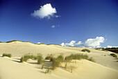 Deserted dunes under blue sky, Sylt island, North Friesland, Schleswig-Holstein, Germany