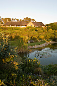 View at a garden with pond and a house in the sunlight, Garden Lodge, Gansbaai, Grootbos Private Nature Reserve, South Africa, Africa