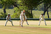 People playing cricket at uitsig Cricket Club, Constania, Cape Town, South Africa, Africa