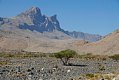 Barren scenery with mountains, Al Hajar mountains, Oman, Asia, Oman, Asia