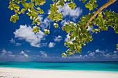 Bikini Lagoon and Resort, Marshall Islands, Bikini Atoll, Micronesia, Pacific Ocean