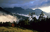 Morning mist between the mountains at Shei-Pa National Park, Taiwan, Asia