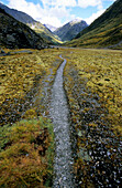 The lonesome Rees Dart Track at the upper Dart Valley, Mt Aspiring National Park, South Island, New Zealand, Oceania