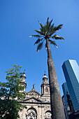 Metropolitan cathedral Plaza de Armas. Santiago. Chile.