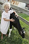 Amish Farm Tour, girl, calf. Shipshewana. Indiana. USA.