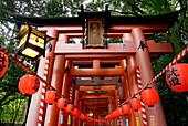 Motomiya-sai festival at Fushimi Inari Taisha shrine. Thousands of lanterns are lit to represent a sea of flame. Kyoto, Japan.