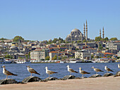 The Golden Horn Shores. Istanbul. Turkey