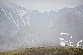 Mountainbiker riding in front of a foggy alp panorama, Ischgl, Tyrol, Austria