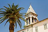 Belltower with palm tree under blue sky, Makarska, Dalmatia, Croatia, Europe