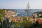 View at houses and harbour of Hvar, Hvar Island, Dalmatia, Croatia, Europe