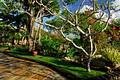The garden of the Four Seasons Resort under blue sky, Jimbaran, South Bali, Indonesia, Asia