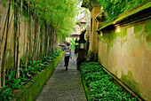 A woman carrying an oblation through a narrow alley, Yeh Agung, Bali, Indonesia, Asia