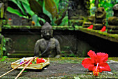 Red flower and incense sticks Ubud, Bali, Indonesia, Asia