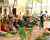 Farmers selling flowers and vegetables at the market at the village San Nicholas los Ranchos, Puebla province, Mexico, America