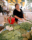 Indian woman at a market stand with cactus leaves and vegetables at the village San Nicholas los Ranchos, Puebla province, Mexico, America