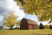 Autumn fall color pastoral farm scene near Springfield Illinois