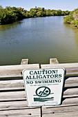 Caution Alligators no swimming sign at Lovers Key State Park Recreation Area Bonita Springs Florida