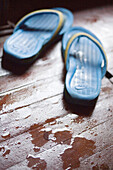 Color, Colour, Comfort, Comfortable, Concept, Concepts, Daytime, Floor, Floors, Footgear, Footwear, Indoor, Indoors, Interior, Pair, Pairs, Sandal, Sandals, Selective focus, Shoe, Shoes, Slipper, Slippers, Still life, Style, Two, Two items, Water, Wet, L6