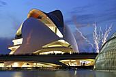 Palacio de las Artes Reina Sofía, City of Arts and Sciences, by S. Calatrava. Valencia. Comunidad Valenciana, Spain.