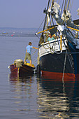 The Schooner Grace Bailey moored in Stonington harbor, Penobscot Bay, Maine USA