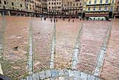 Siena, Piazza del Campo, pavement, rain, wetness, Tuscany, Italy