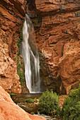United States, US, Arizona, Grand Canyon National Park, Colorado River, Deer Creek Falls.