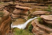 United States, US, Arizona, Grand Canyon National Park, Colorado River, Deer Creek.