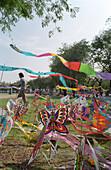 Kites, Lumphini Park, Bangkok, Thailand