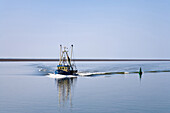 Shrimp boat, Wadden Sea, North Frisian Islands, Schleswig-Holstein, Germany