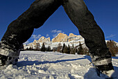 View through the legs of a child at winter landscape under blue sky, Dolomites, South Tyrol, Italy, Europe