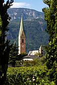 Blick über Weinreben auf einen Kirchturm, Terlan, Südtirol, Italien, Europa